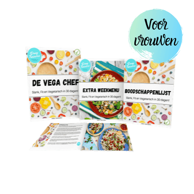de vega chef recepten download